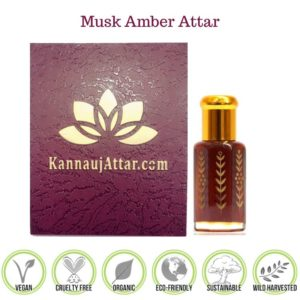 Buy Mushk Amber Attar Perfume Oil