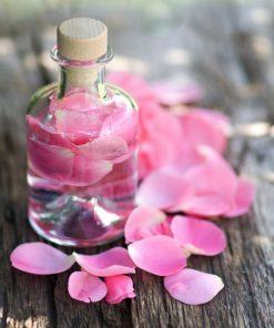 Pure Rose Water | Rose Hydrosol Manufacturer Kannauj