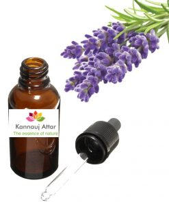 Pure Lavender Essential Oil Buy Online
