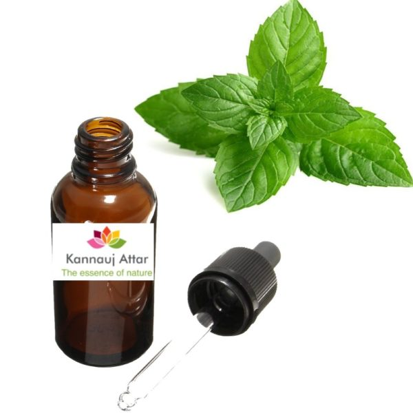Peppermint Essential Oil Manufacturer India - Buy Wholesale