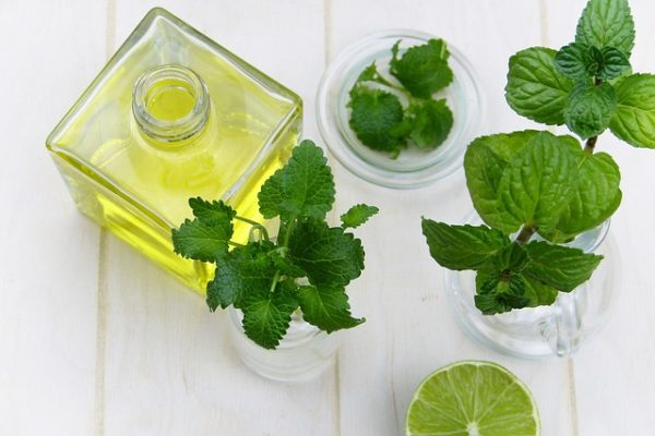 Buy Peppermint Essential Oil
