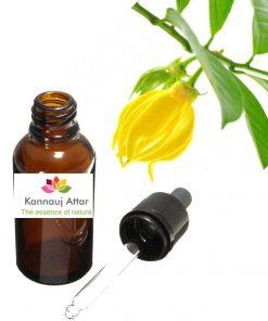 Ylang Ylang Essential Oil/ Perfume Ingredient