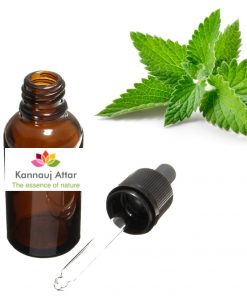 Spearmint Essential Oil - Buy Online from India Manufacturer