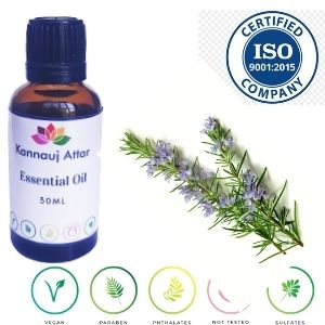 Pure Rosemary Essential Oil Manufacturer Kannauj