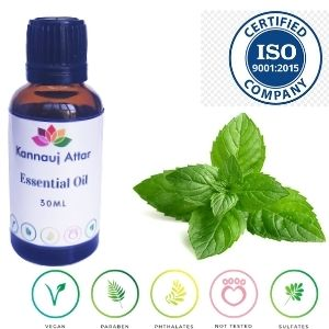 Buy Spearmint Essential Oil Wholesale Kannauj India
